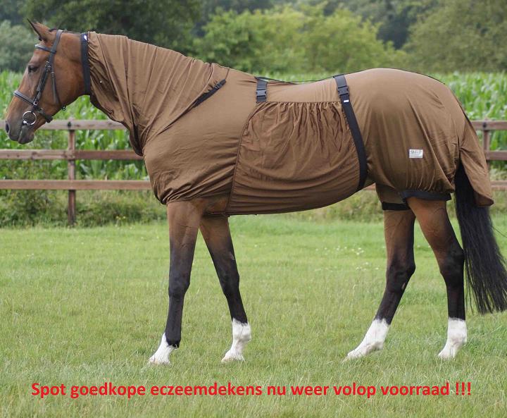 Goedkope paarden eczeem deken aanbieding